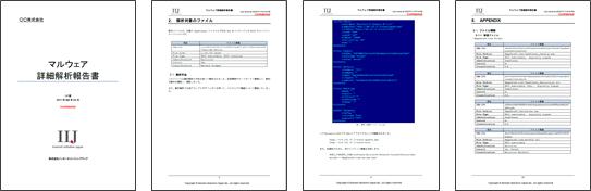 マルウェア検体解析オプション詳細解析報告書のイメージ